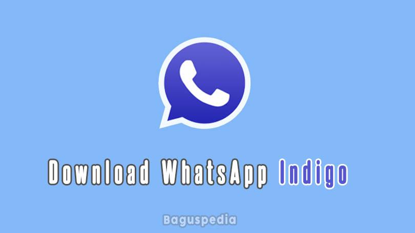 Download Whatsapp Indigo