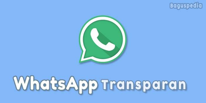 Whatsapp Transparan Terbaru
