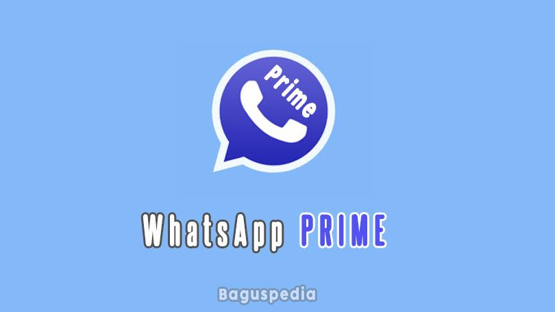 Whatsapp Prime Apk