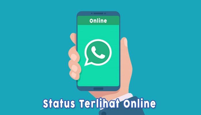 Whatsapp Terlihat Online Karena Disadap