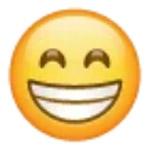 Arti Emoticon Whatsapp Senyum Nyengir