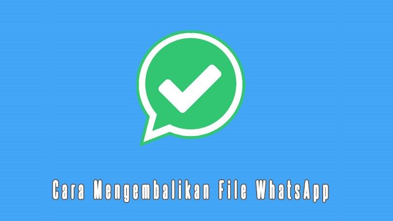 Cara Mengembalikan File Whatsapp Yang Terhapus Terbaru