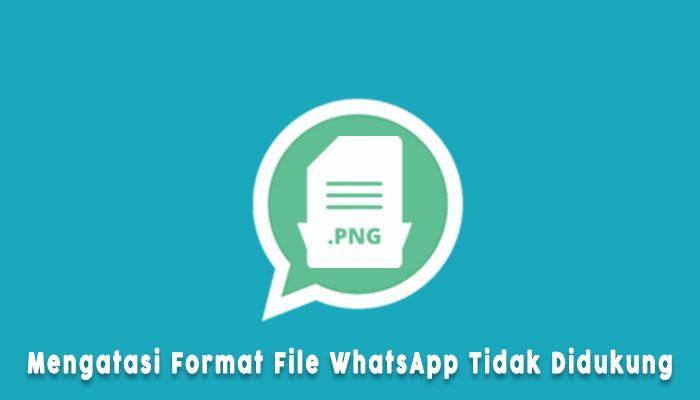 Penyebab Format File Tidak Didukung Di Wa