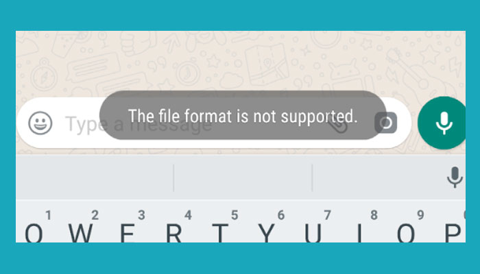 The Format File Is Not Supported Wa