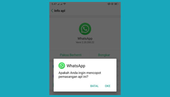 Whatsapp Memeriksa Pesan Baru